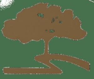 Oak Creek Community Logo of a Tree on a winding path